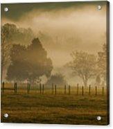 Fog In The Park Acrylic Print