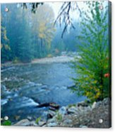 Fog In The Wenatchee Forest Acrylic Print