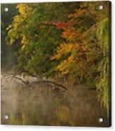 Fog Rolls Into Fall Acrylic Print