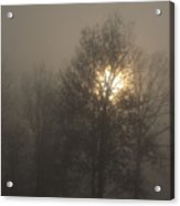 Fog Shine Acrylic Print