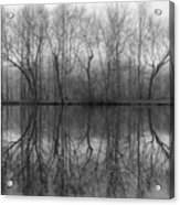 Foggy Lagoon Reflection #3 Acrylic Print