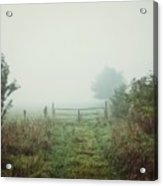Foggy Field Acrylic Print