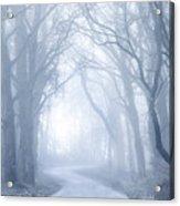 Foggy Holloway Acrylic Print