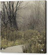 Foggy Late Fall Morning Acrylic Print