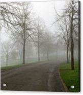 Foggy Morning At The Park Winding Path Acrylic Print