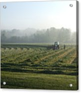 Foggy Morning Field Acrylic Print