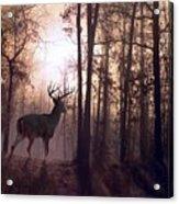 Foggy Morning In Missouri Acrylic Print