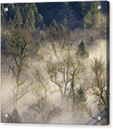 Foggy Morning In Sandy River Valley Acrylic Print