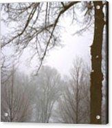 Foggy Morning Landscape 10 Acrylic Print