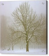 Foggy Morning Landscape 7 Acrylic Print