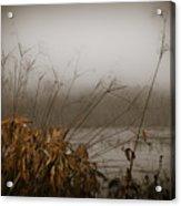 Foggy Morning Marsh Acrylic Print