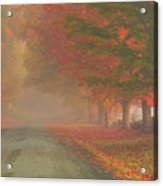 Foggy Morning On Cloudland Road Acrylic Print