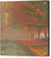 Foggy Morning On Cloudland Road Acrylic Print