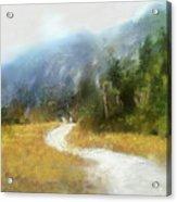 Foggy Morning On Mount Mansfield - 2014 Acrylic Print