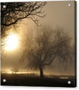 Foggy November Sunrise On The Bay Acrylic Print
