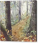 Foggy Path Acrylic Print