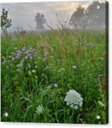 Foggy Prairie In Glacial Park In Mchenry County Acrylic Print