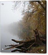 Foggy River Bank Acrylic Print
