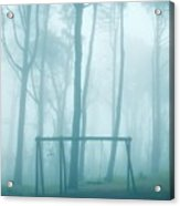 Foggy Swing Acrylic Print