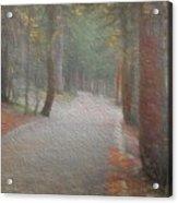 Foggy Trail Near Bear Lake Acrylic Print