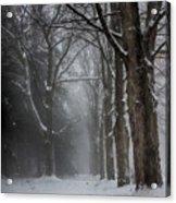 Foggy Vermont Winter Path Acrylic Print