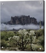 Foggy Winter Morning In The Supes  Acrylic Print