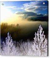 Foggy Winter Sunset Acrylic Print