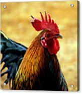 Foghorn I Acrylic Print