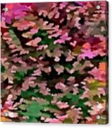 Foliage Abstract In Pink, Peach And Green Acrylic Print