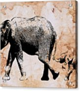 Following Mum - Mother And Baby Elephant Animal Decorative Poster  4 - By Diana Van Acrylic Print
