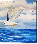 Following Sea Acrylic Print