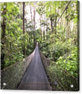 Foot Bridge In Costa Rica Acrylic Print