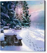 Foot Prints On Snow-port Moody Acrylic Print