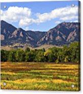 Foothills Of Colorado Acrylic Print