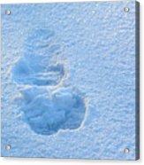 Footprint In The Snow Acrylic Print
