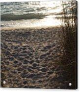 Footprints In The Dunes Acrylic Print