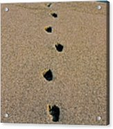 Footprints In The Sand ... Acrylic Print