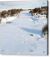 Footprints In The Snow V Acrylic Print