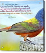 For Every Storm A Rainbow Irish Blessing Acrylic Print