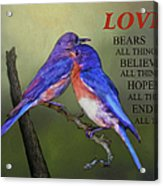 For Love Of Bluebirds And Scripture Acrylic Print