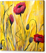 For The Love Of Poppies Acrylic Print