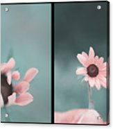 For You - Diptych Acrylic Print