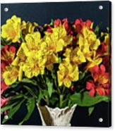 Foral Bouquet Of Red And Yellow Astomelia Acrylic Print