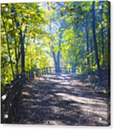 Forbidden Drive - Philadelphia Acrylic Print