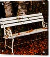 Foresaken Seat Acrylic Print