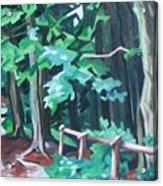Forest 1 Acrylic Print