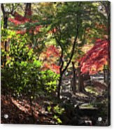 Forest #7 4k Acrylic Print