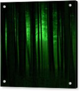 Forest Abstract03 Acrylic Print by Svetlana Sewell