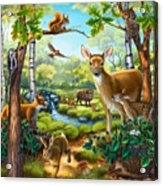 Forest Animals Acrylic Print
