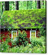 Forest Chapel Acrylic Print